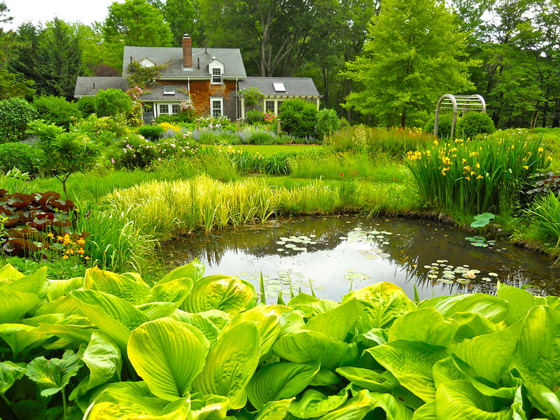 Farm pond andrew grossman landscape design for Design of farm pond ppt