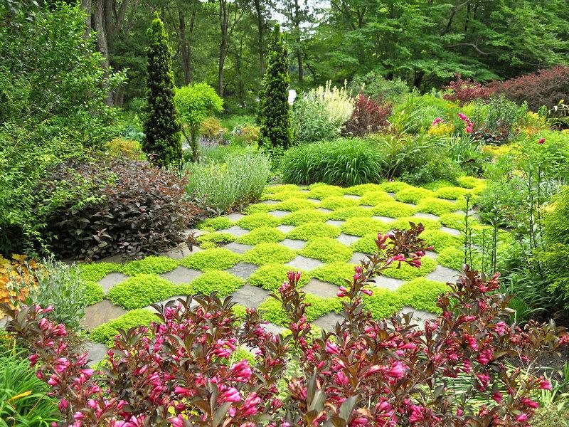 Checkerboard patio andrew grossman landscape design for Checkerboard garden designs
