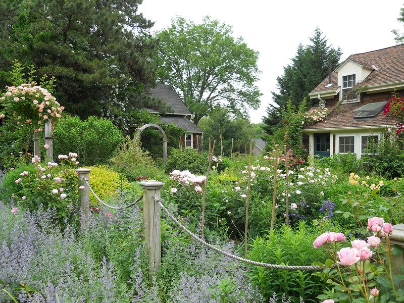 Cottage Garden Andrew Grossman Landscape Design